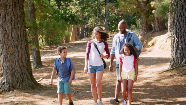 "5.1.20 - Get Up And Get Moving:  Mr. Mason's ""Local Hiking Trails For The Family"""